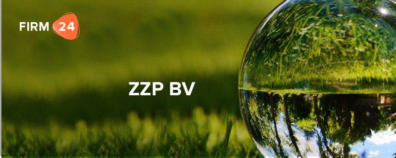 ZZP BV – Zinloze constructie of slimme fiscale truc?