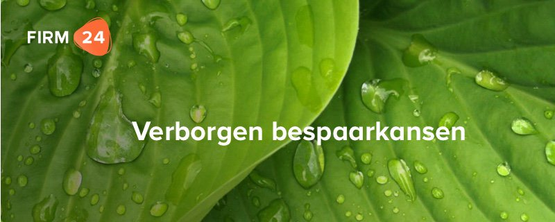 Evergreens – Verborgen bespaarkansen